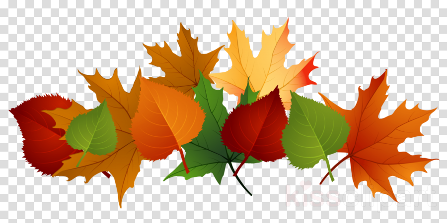 autumn leaves clipart Clip art