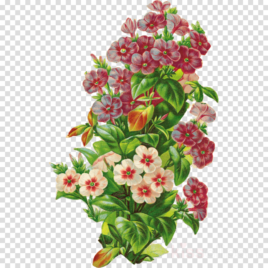 复古风格的剪辑花卉设计剪辑艺术