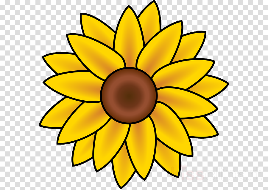 Black And White Flower clipart - Drawing, Sunflower ...