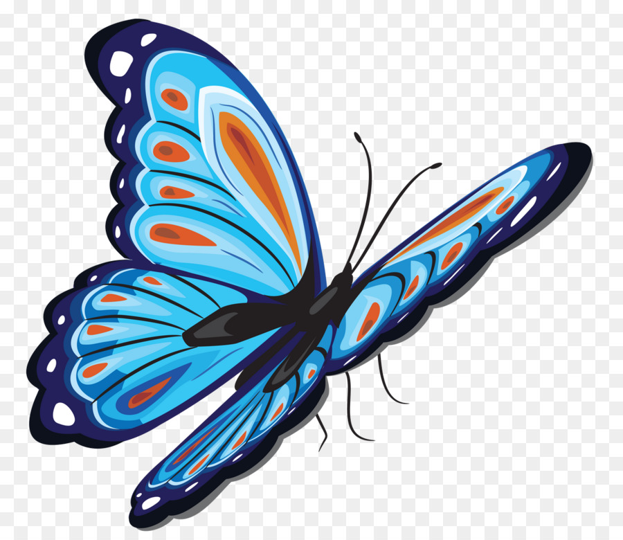 butterfly green png clipart Butterfly Clip art