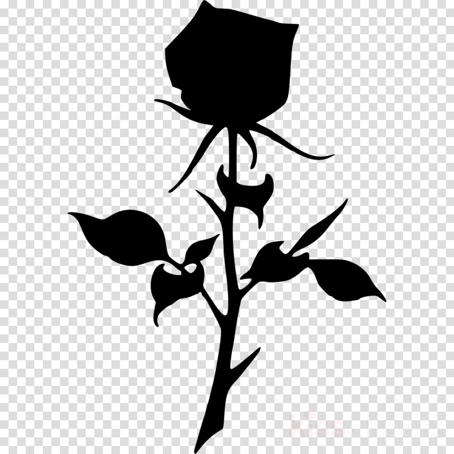 Drawing Silhouette Rose Transparent Png Image Clipart Free Download