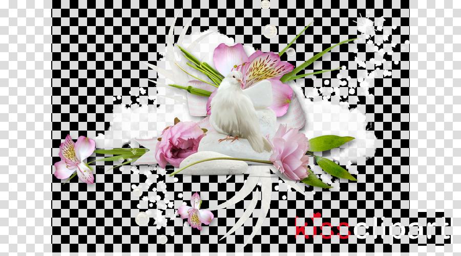 Cherry Blossom Cartoon
