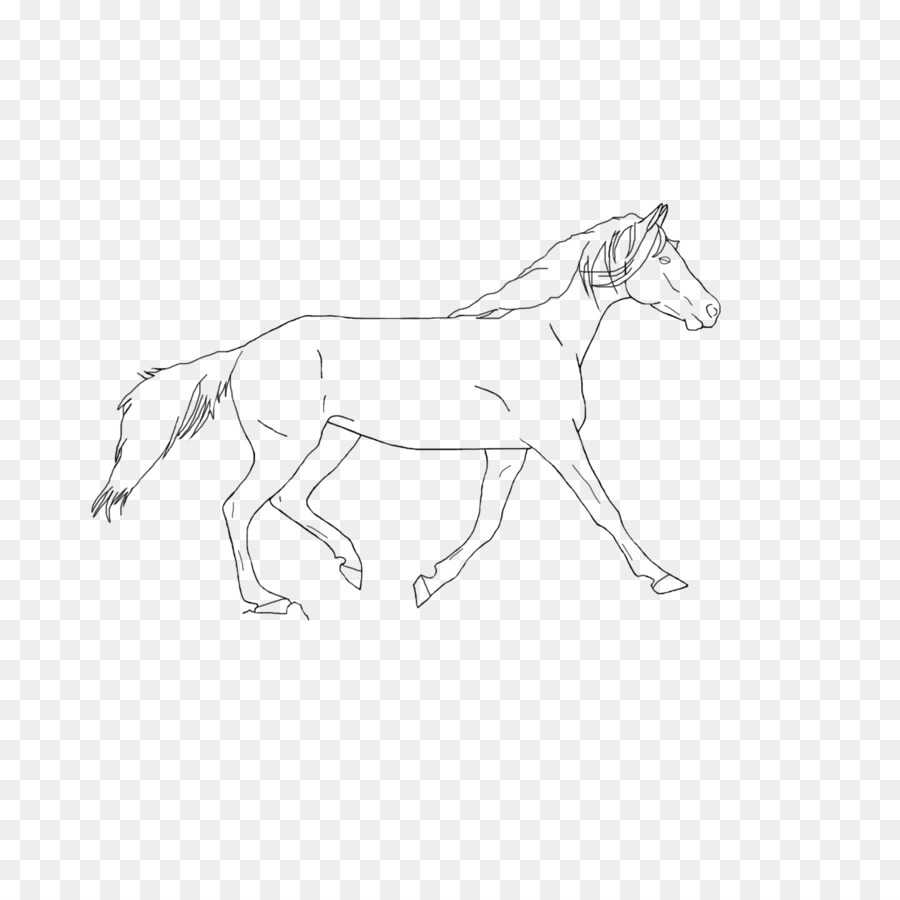 Horse Cartoon
