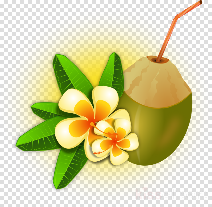 Coconut Leaf