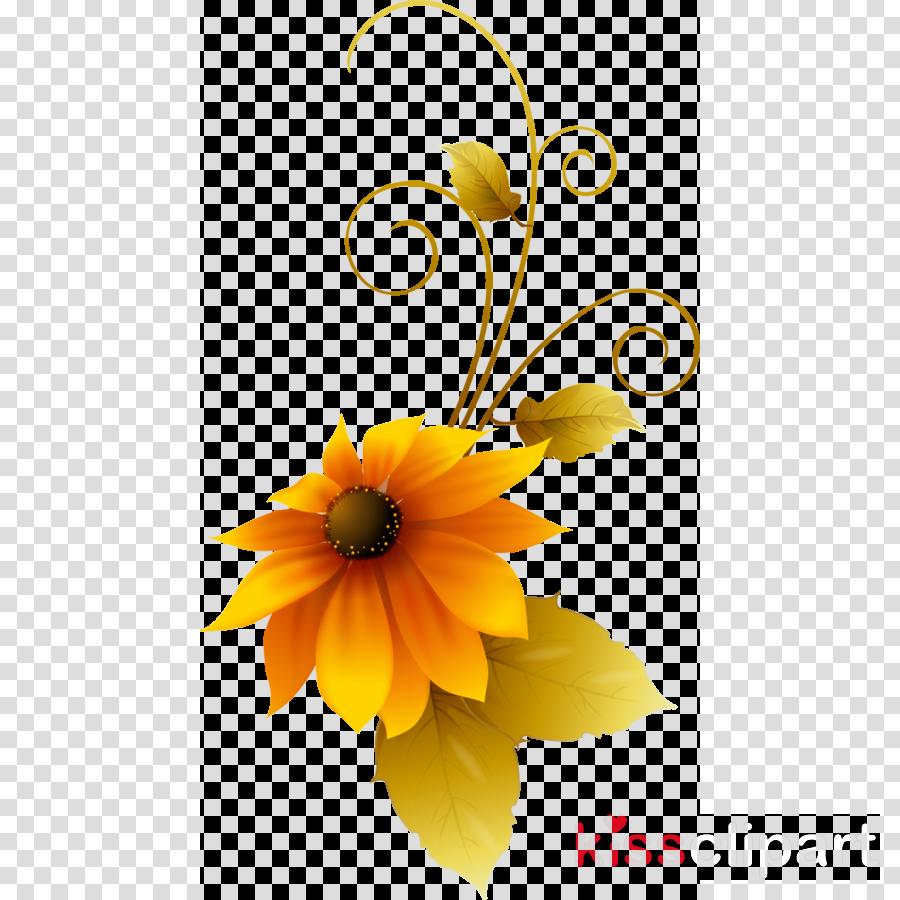 Floral Flower Background clipart - Flower, Design, Graphics