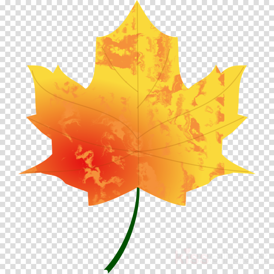 fall transparent background leaves clipart Leaf Clip art