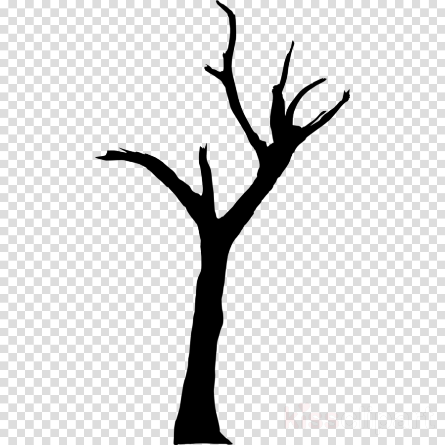 Black And White Flower Clipart Silhouette Tree Drawing Transparent Clip Art