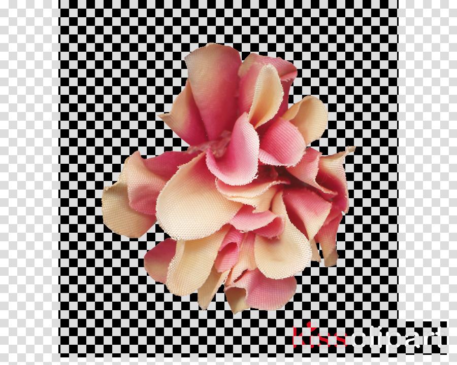 Flower clipart Cut flowers Petal