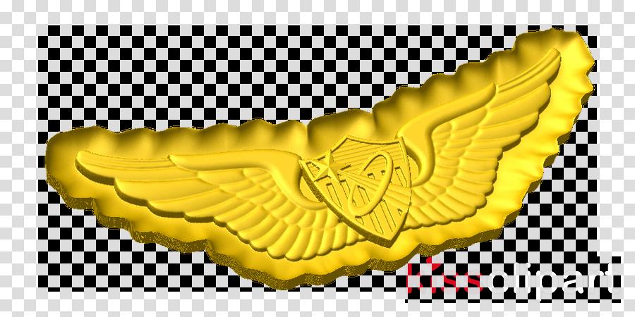 army astronaut badge - 792×378