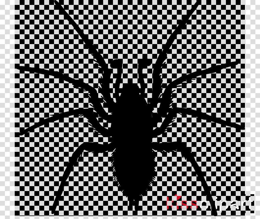 Drawing Illustration Line Transparent Image Clipart Free