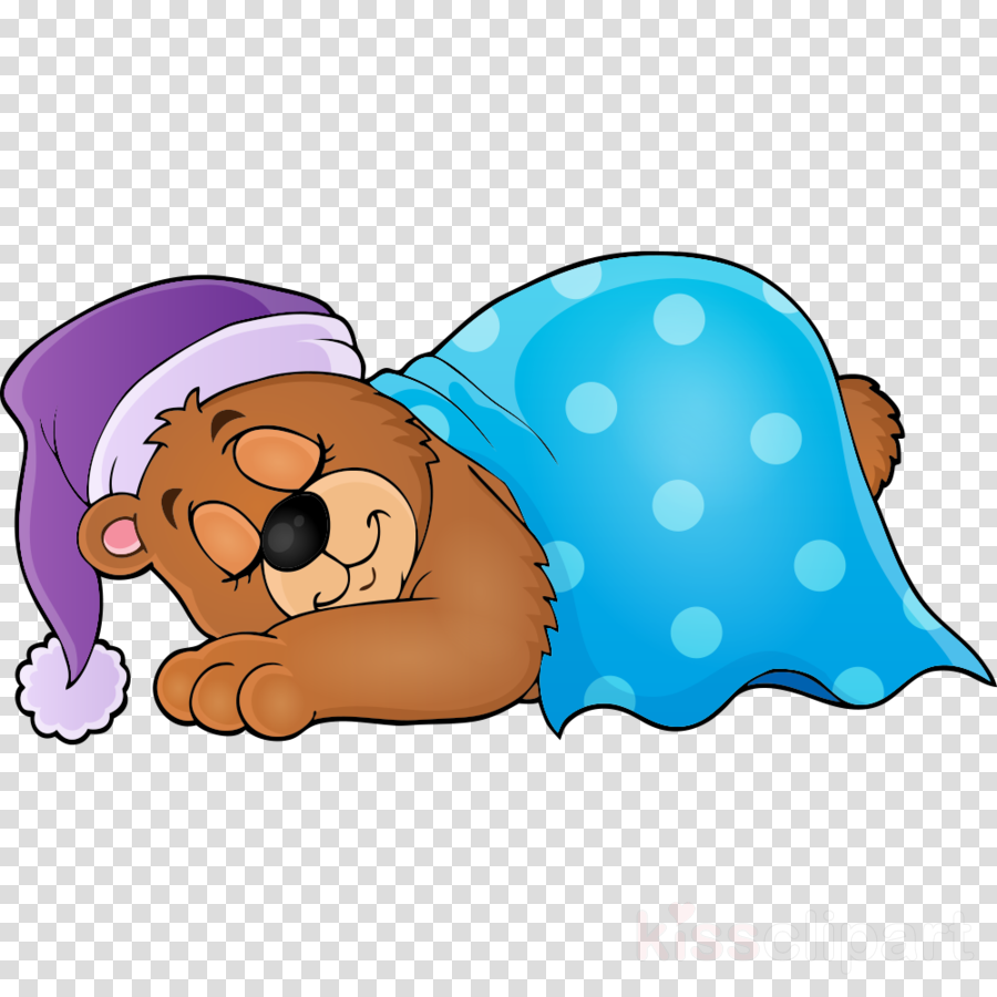 Bear sleeping. Polar cartoon clipart sleep