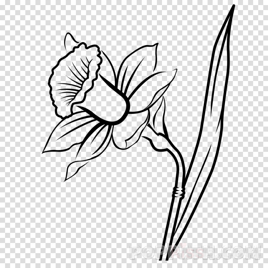 Floral Clipart Silhouette Pencil And In Color Flower - Flower Black And  White - Free Transparent PNG Clipart Images Download