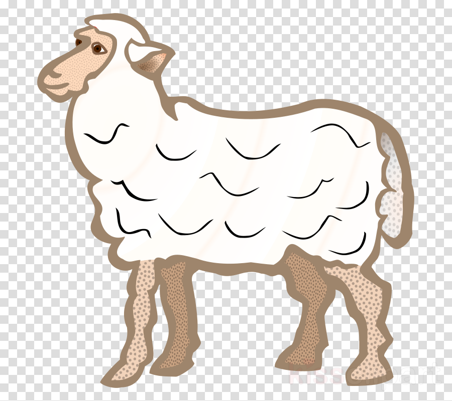 Sheep Cartoon Goat Transparent Png Image Clipart Free Download