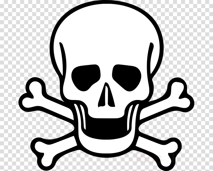Drawing Skull Sketch Transparent Png Image Clipart Free Download