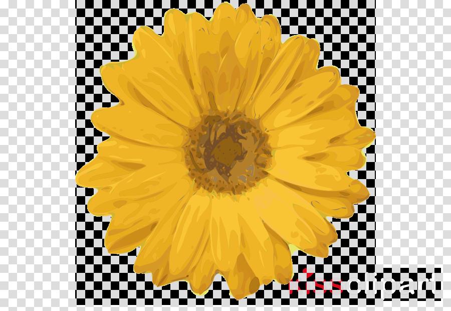 Sunflower Black And White