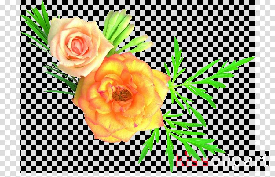 cut flowers clipart Garden roses Flower Iran
