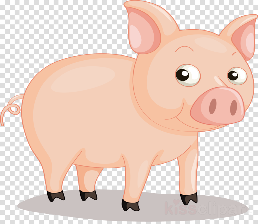 Pig PNG and Clipart   Pig cartoon, Cute pigs, Animated animals