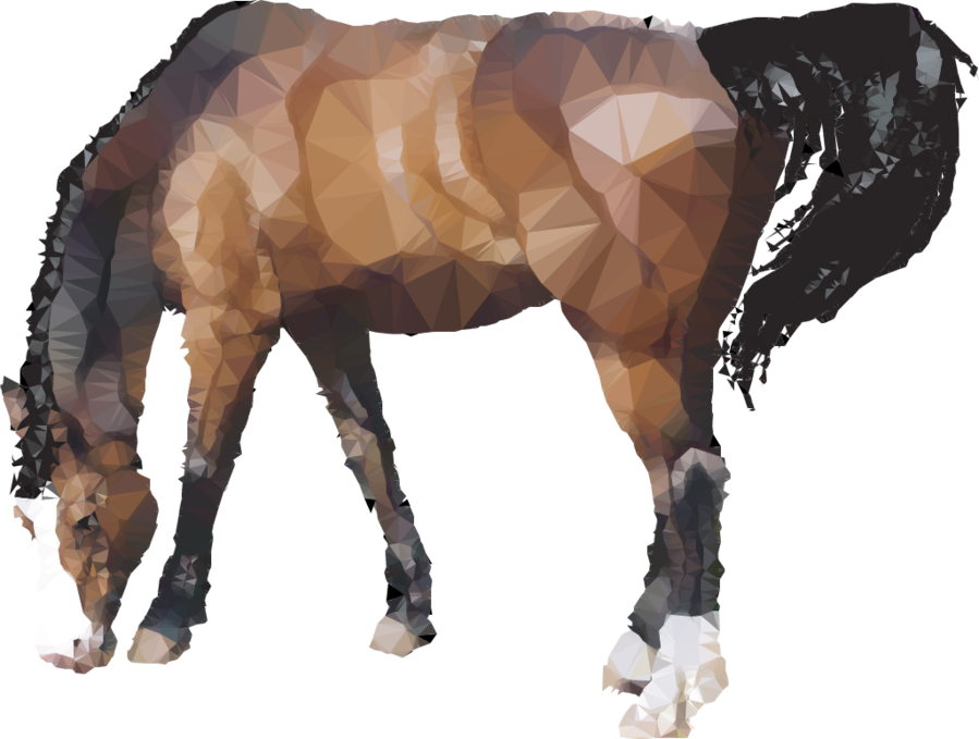 horse png clipart Horse Pony
