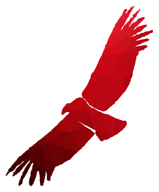 Portable Network Graphics clipart Eagle Bird