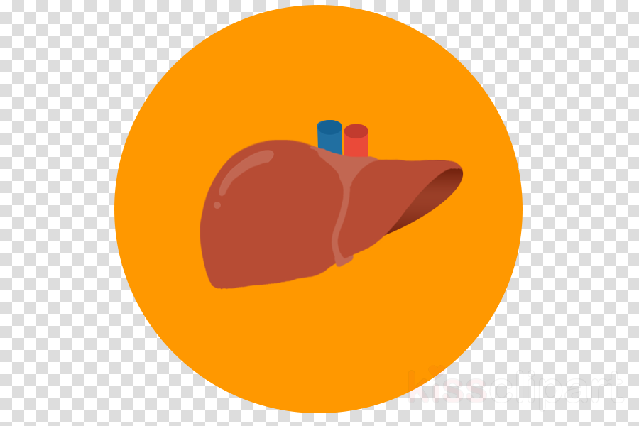Fruit Cartoontransparent png image & clipart free download