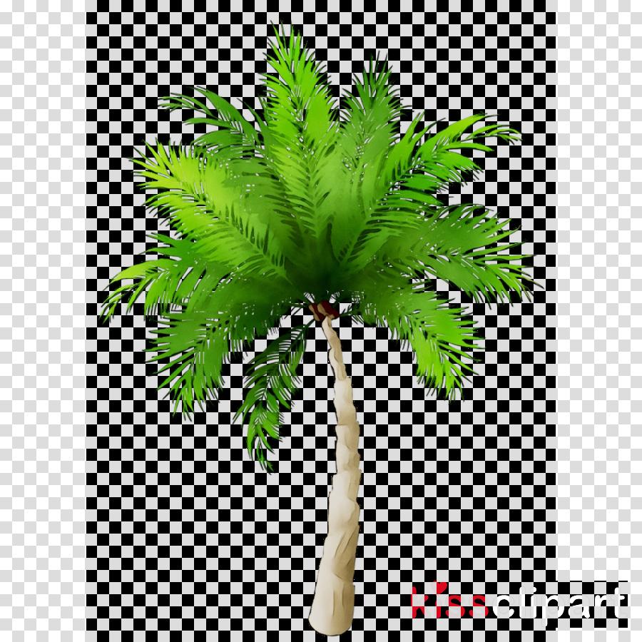 Coconut Leaf Drawing