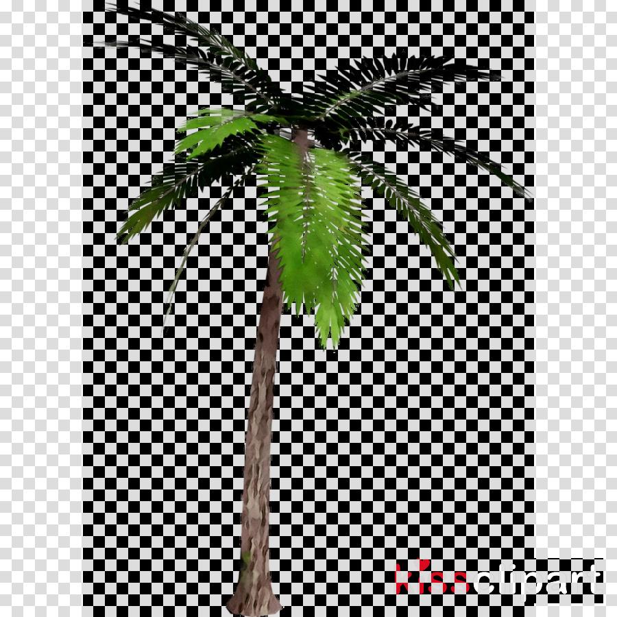 Date Tree Leaf