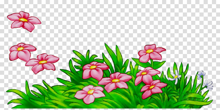 Flower Pink Plant Transparent Png Image Clipart Free Download