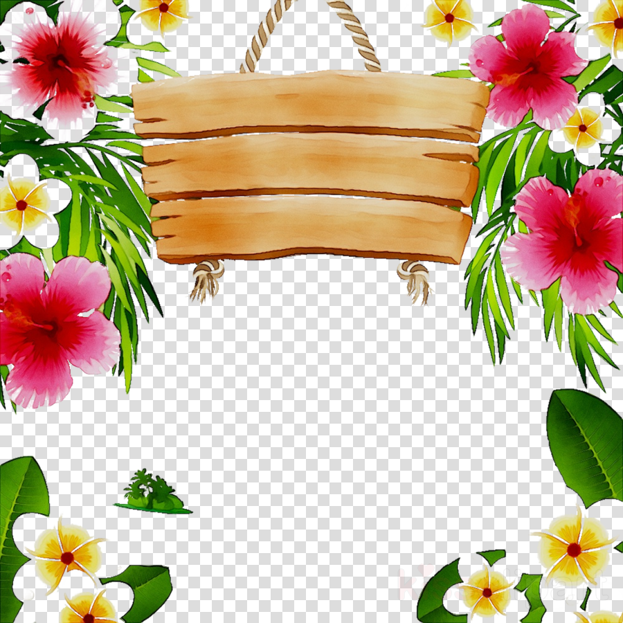 Floral Background Frame Clipart Flower Plant Hibiscus