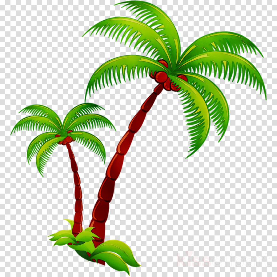 background coconut clipart Coconut water Coconut milk