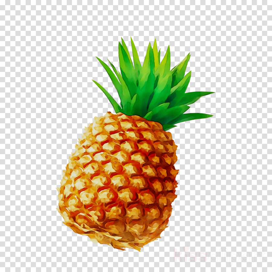 Pineapple Cartoon