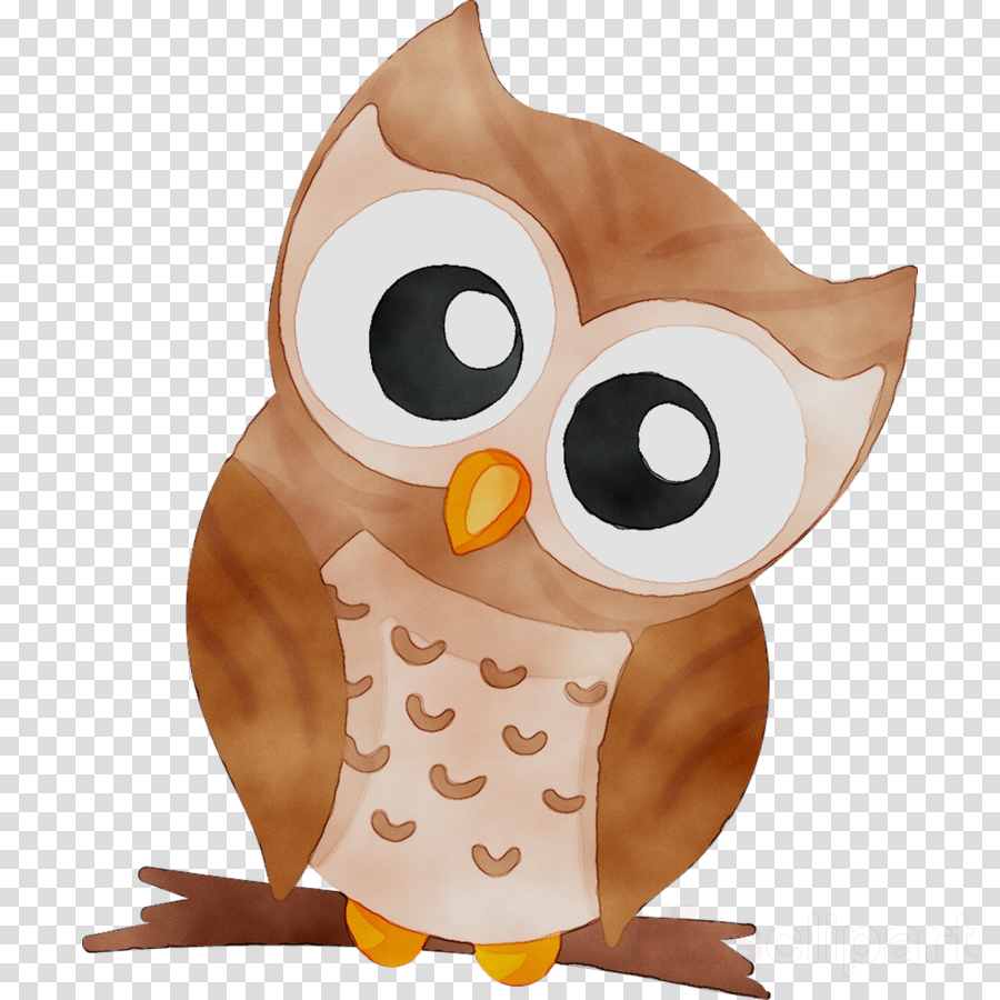 Animal Cartoon Clipart Owl Bird Cartoon Transparent Clip Art