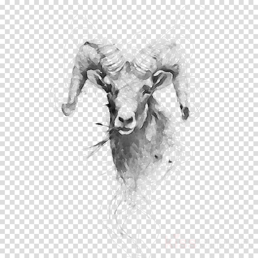 Drawing Of Family Clipart Sheep Drawing Sketch Transparent Clip Art