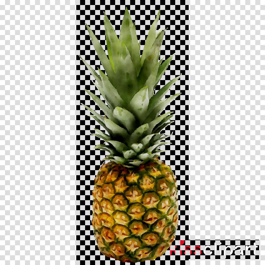 Pineapple Cartoon clipart - Pineapple, Juice, Ananas ...