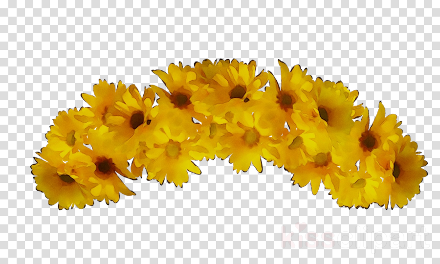 floral flower background clipart flower yellow plant transparent clip art floral flower background clipart