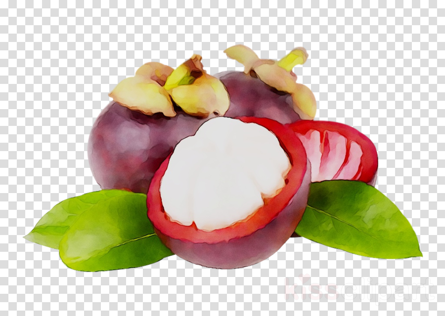 Purple Flower clipart - Plant, Food, Fruit, transparent clip art