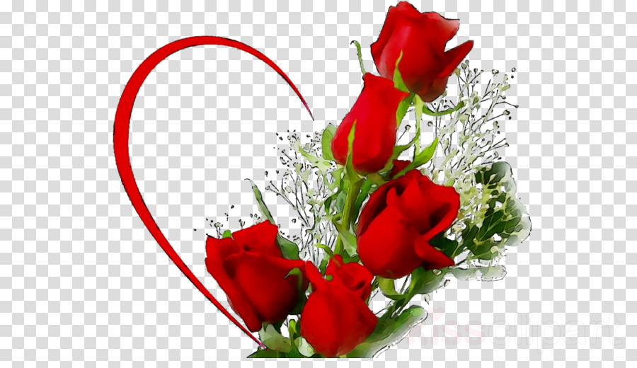 Rose Love Flowers