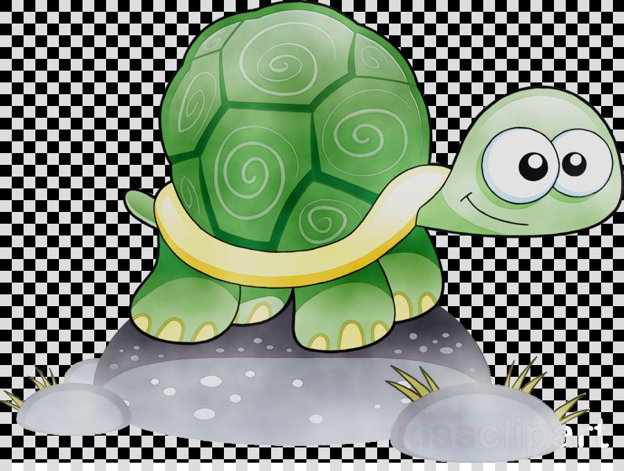 Sea Turtle Background