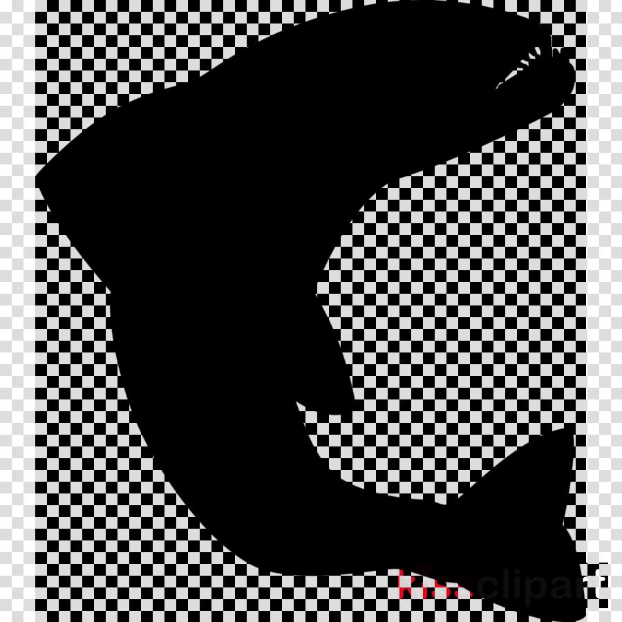 Shark Fin Background