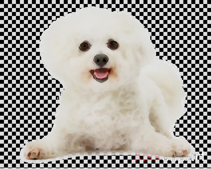 Dog Cartoon Clipart Puppy Dog White Transparent Clip Art