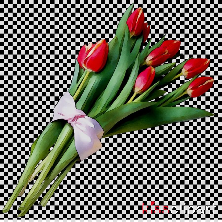 cut flowers clipart Tulip Flower bouquet Cut flowers