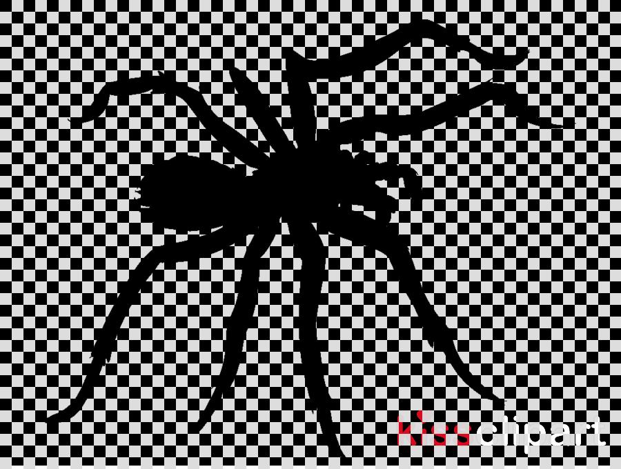 animation spider animated clipart Spider-Man Cartoon
