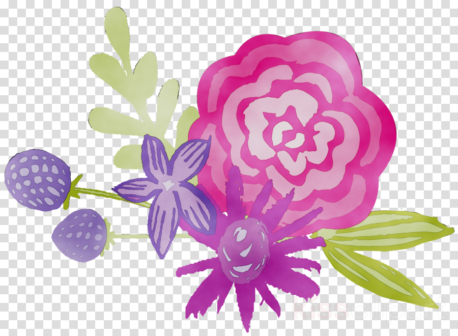 lilac clipart Floral design Rose family