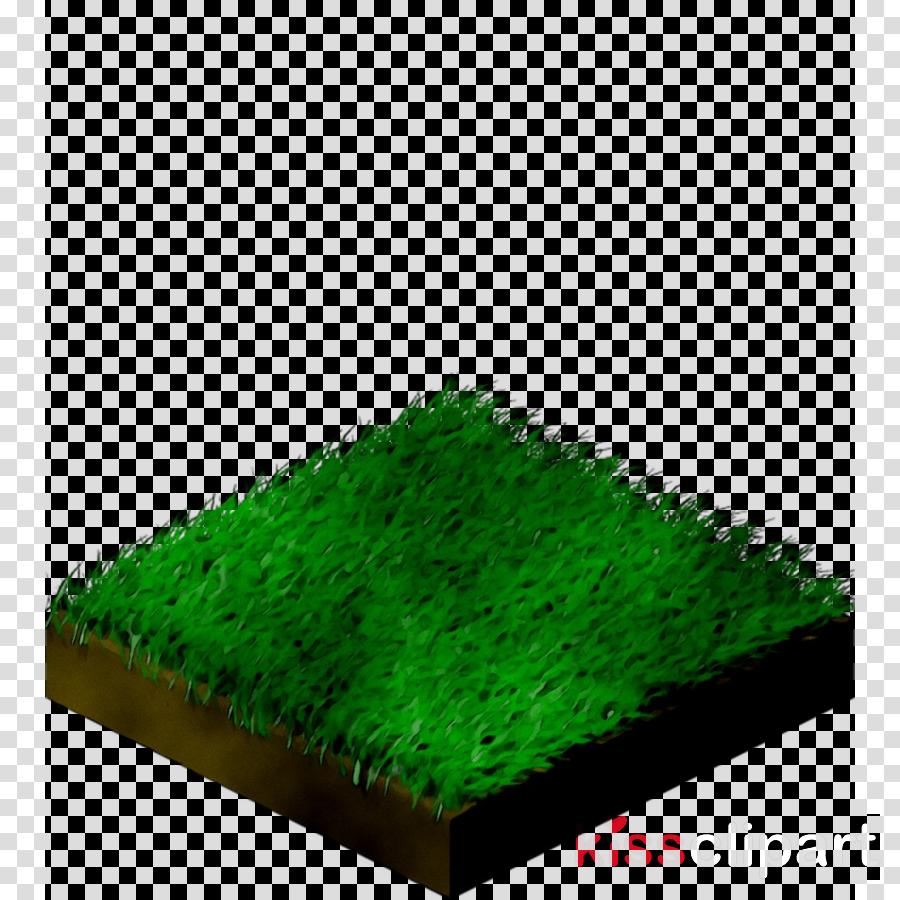 grass clipart Grasses