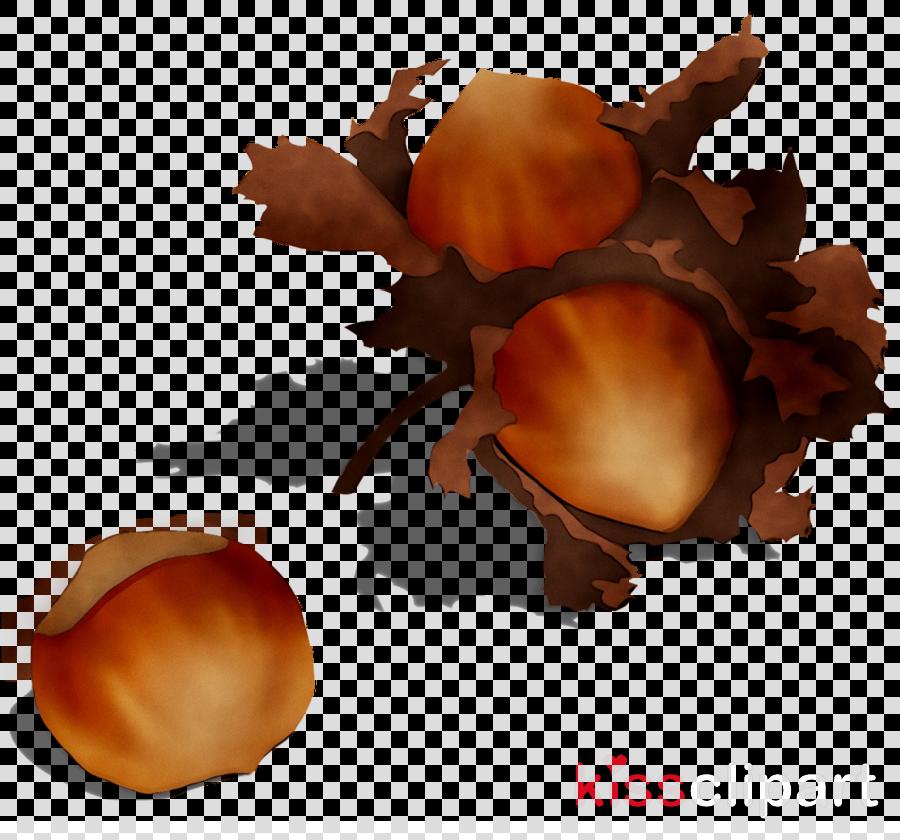 chestnut clipart Orange S.A.
