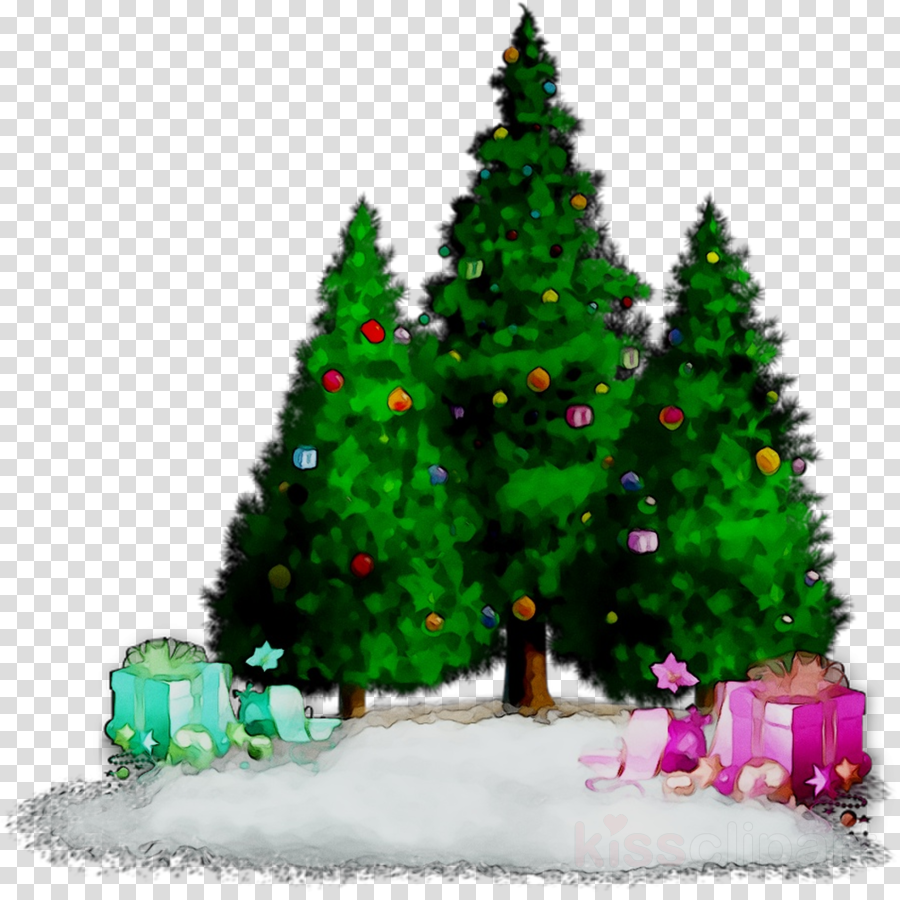 christmas tree clipart Christmas tree Christmas ornament Spruce