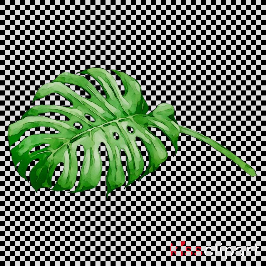 leaf clipart Centar Tara / Yoga studio Tara Tangkahan Inn