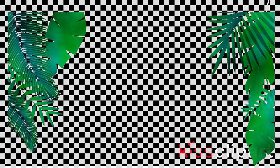Palm Tree Drawing Clipart Leaf Design Plants Transparent Clip Art