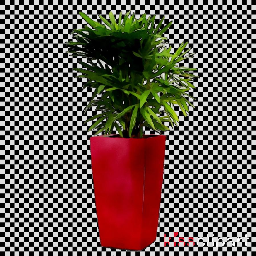 Watercolor Room Plants Clip Art, House Plants Potted Plant Clipart, Cactus  Succulent, Kera ...#art #cactus #clip… in 2020   House plant pots, Plant  clips, Indoor plant pots