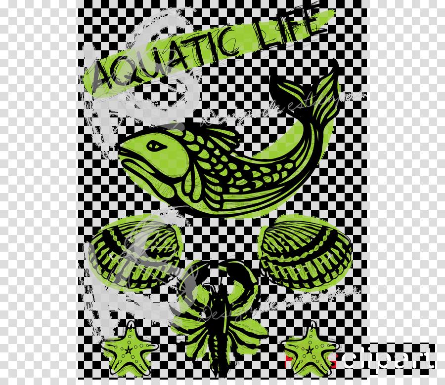 Website WordPress Clip art August Insect