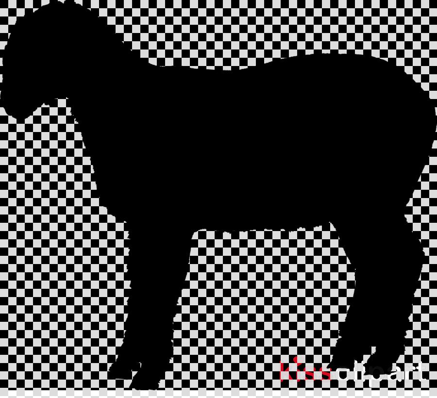 Appaloosa Shetland pony American Miniature Horse Clip art American Quarter Horse